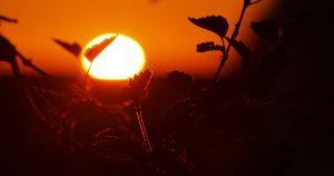 10 consejos para protegerte del Sol
